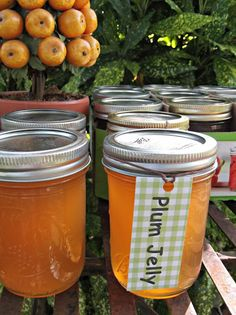 What's For Supper?: Plum Jelly