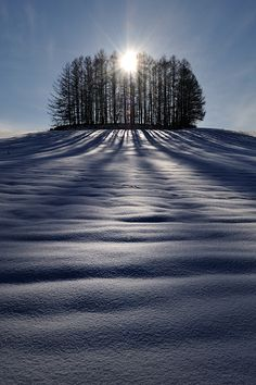 The Sun and Shadows  by Kent Shiraishi, via 500px