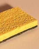 """Ew! Whats in Kitchen Sponges? - Netscape Home & Living 