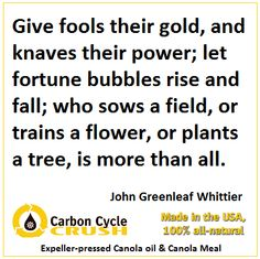 We wish everyone a beautiful week ahead. Carbon Cycle, The Fool, Wish, Crushes, Bubbles, Inspirational Quotes, Let It Be, Beautiful, Life Coach Quotes