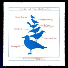 Mark Dion - Birds of the High Line - Printed Matter