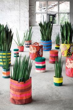 Love these canvas sacks instead of pots for plants!