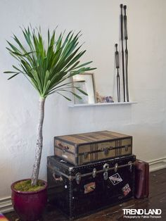 I adore decorating with suitcases.