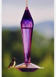 392 Best Vintage Birds images in 2019 | Birds, Vintage birds