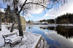 """Obradujte sebe i one koje volite, prelepa priroda i odmor za pamćenje #Hotelidila Pogledajte pakete koje smo pripremili za Vas: http://www.hotelidila.com/index.php/sr/offers  www.hotelidila.com Hotel & Spa """"Idila"""" Đurkovac bb, 31315 Zlatibor +381 (0)31 846 371 info@hotelidila.com #Spa #popusti #zimovanje #skijanje #sneg #sankanje #ski"""