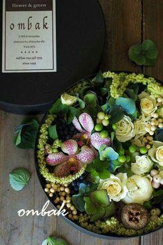 Orchideen - Rosen