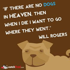 /\/\// I'll go where the dogs are \\/\/\