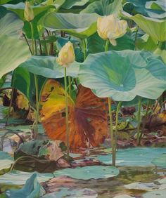 Lotus at Shelby Farms II by by Claudia Tullos-Leonard Space Watercolor, Watercolor Artists, Watercolor Flowers, Water Lilies Painting, Lily Painting, Tableaux D'inspiration, Weird Trees, Lotus Flower Art, Drawing Wallpaper