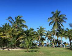 Die gepflegte tropische Gartenanlage #taipan_mauritius #mauritius Mauritius, Hotels, Strand, Dolores Park, Travel, Tropical Paradise, Formal Gardens, Ocean, Island