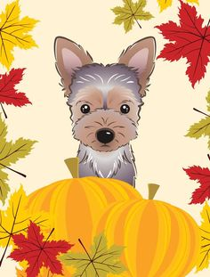 Caroline's Treasures Yorkie Puppy Thanksgiving Flag Garden Size at Lowe's.The Garden size flag is made from a polyester material. Two pieces of material have been sewn together to form a double sided flag. Garden Flag Stand, Garden Flags, Garden Poles, Wooden Flag Pole, Yorky, Yorkie Puppy, Yorkshire Terrier Puppies, Thing 1, Flag Decor