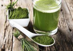 Conheça o novo chá em pó instantâneo que turbina seu metabolismo, derrete a gordura e promete emagrecer até 6 kg sem esforço! Você já ouviu falar no matchá? Trata-se de um pó integral e instantâneo…