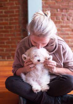Coton de Tulear puppy. 12 weeks.