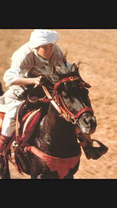 Risultati immagini per the black stallion Black Stallion, Classic Movies, Good Movies, Horses, Animals, Fictional Characters, Geek, Sports, Hs Sports