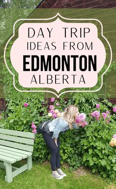 Oh The Places You'll Go, Cool Places To Visit, Places To Travel, Alberta Travel, Camping And Hiking, Hiking Trails, Road Trip Destinations, Roadside Attractions, Canada Travel