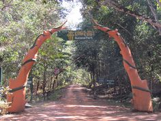 Kanger Ghati National Park, #Bastar, #Chhattisgarh - A #Wildlife Abode - The national park was started in the year 1982 and with a large variety of flora and fauna found within the park there are different visiting places there as well. Few of them are Kailash Caves, Kutumsar Caves, Kanger Dhara and Bhim Dhara crocodile parks etc. #travel #destination #wanderlust