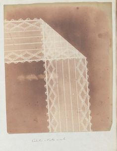 rosemarygeorge:    A Henry Fox Talbot photogram.