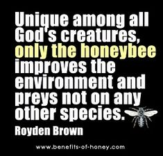 Honeybee is God's unique creature.