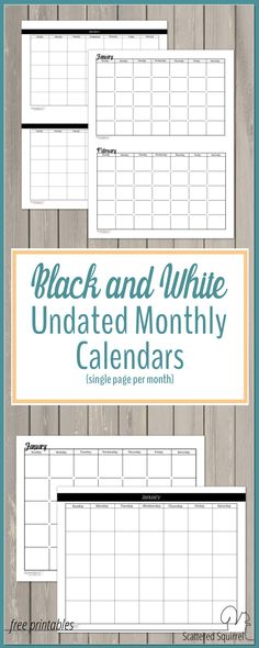 Black and White Undated Monthly Calendars are perfect for those that like to use color coding or stickers in your planner.
