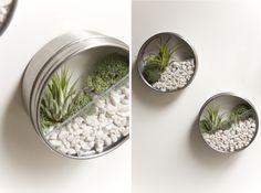 Faça seu próprio jardim minúsculo vertical em poucos minutos - Jardim das Ideias STIHL