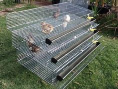 3    TIER    FULLY    AUTOMATIC    QUAIL    LAYING    CAGES
