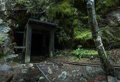 5. An abandoned mine entrance in the woods at Opal Creek: