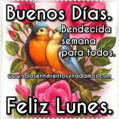 Buenos días. Bendecida semana para todos. Good Morning, Blessed, Blessings, World, Cute Good Morning Quotes, Blessed Friday, Happy Week, Buen Dia, Bonjour
