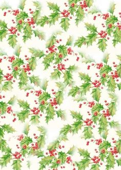 papier Noel-fond Noel-papier houx-hiver-paper-background