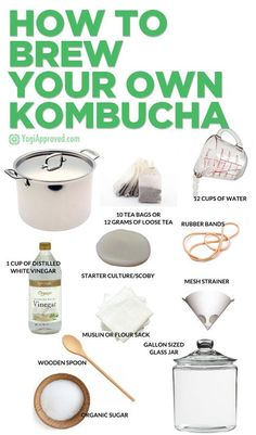 How to Brew Your Own Kombucha Learn How to Brew Kombucha Tea at Home – Here's Everything You Need to Know Make Your Own Kombucha, Kombucha Flavors, Kombucha Scoby, How To Brew Kombucha, Probiotic Drinks, Brew Your Own, Kombucha Benefits, Making Kombucha, Health Benefits
