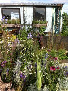 Jeni Cairns Garden Design