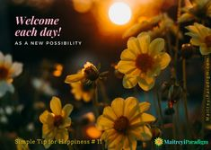 Here is a simple tip for happiness... welcome each day as a new possibility... read on...  #artofhappiness #simpletips #tipforhappiness #happiness #joy #joyofliving #joiedevivre #joyfulliving #happy #newdaynewpossibilities #dawnofnewday #welcomeeachday #connectingwithcosmos #ascension #consciousliving #Journeytoneness #oneness #spiritualawareness Good Morning Flowers, Good Morning Wishes, Galaxy Flowers, Free Good Morning Images, Tips To Be Happy, Hello March, We Are All One, Live In The Present, Spiritual Awareness