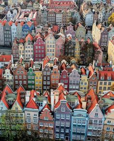In Gdansk, Poland. Places To Travel, Places To See, Travel Destinations, Vacation Travel, Overseas Travel, Gdansk Poland, Destination Voyage, Travel Aesthetic, Victorian Houses