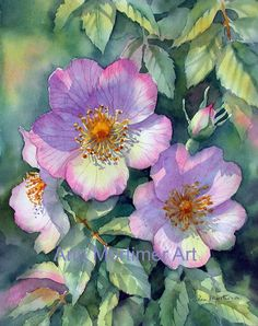 Ann Mortimer's Painting Blog: Has link to video tut