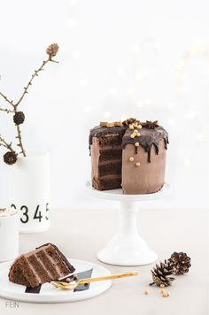 ... chocolate gingerbread cake ...