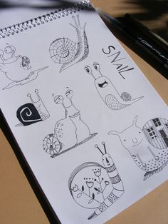 Snail illustration sketch-plans. Created with Sacura pigma micron pencils.