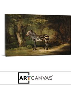 Ready-to-hang Zebra 1763 Canvas Art Print for Sale canvas art print for sale. Free hanging accessories and insurance. Art Prints For Sale, Zebra Print, Canvas Art Prints, Animals, Animales, Animaux, Animal Memes, Animal, Animais