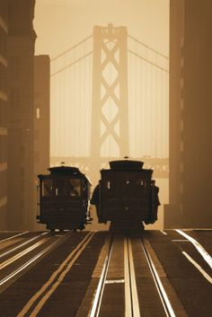 San Francisco. The trams were fun, the mist was eternal. Looking up while crossing the Golden Gate bridge made me feel like being in a falling elevator. That was fun as well.