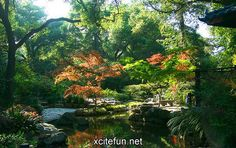 Few spaces are more peaceful and awe-inspiring than a beautiful garden. Description from unlimitedcruiseandtravel.wordpress.com. I searched for this on bing.com/images