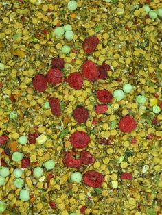 Small Hookbill Supreme Blend PER LB.   An awesome MyBirdSafeStore custom blend consisting of seed,human grade herbs, dried vegetables and fruits and a natural pellet - all very pleasing to your bird's taste buds! Contains no peanuts. Recommended for smaller birds