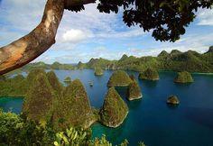 Raja Ampat Islands, Papua