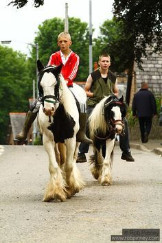 Gypsy Living Appleby Traveller and Gypsy Horse Fair 2012