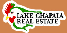 Lake Chapala Real Estate website and resources