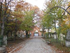 Der St. Marxer Friedhof - Mozarts letzte Ruhestätte  Friedhöfe, Cemeteries, Wien, Vienna, Mozart Vienna, Sidewalk, Country Roads, Plants, Ghosts, Places, Side Walkway, Walkway, Plant
