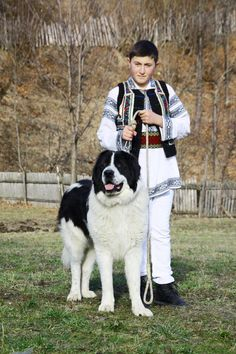 Bucovina Shepherd Dog Unusual Dog Breeds, Rare Dog Breeds, Folk Clothing, Dog Beach, Puppy Mills, Dog Memorial, Dog Quotes, Countries Of The World, Home And Away