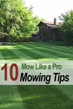 10 Mowing Tips To Mow Like A Pro crazy as it sounds, but I LOVE TO MOW! The kids can't mess it up when I'm done! lol