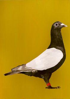 Christine Willcocks. Racing Pigeon - Little Big Horn. acrylic on board 28 x 20cm Flinders Lane Gallery