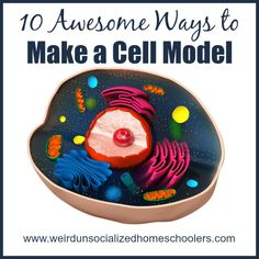 At some point in their education nearly every student will make a cell model. It might as well be fun! Check out these 10 awesome ways to make a cell model!