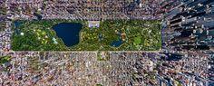 A new book chronicles New York City's ever-expanding skyward reach.