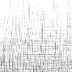 Seagrass eteinen