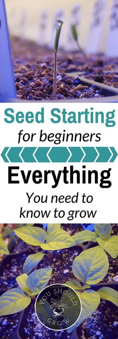 Seed starting can be intimidating. Geared toward the beginner, this book will help you get started growing your own food from seed.