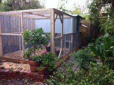 Suburban backyard chook house with secure run by Yummy Gardens Melbourne